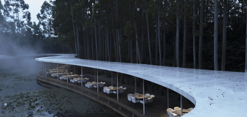 Lotus pond and eucalyptus forest dining experience – revisited