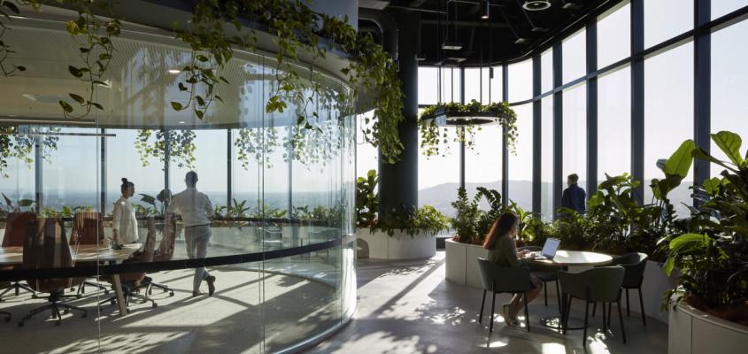 A biophilic workplace – Transurban